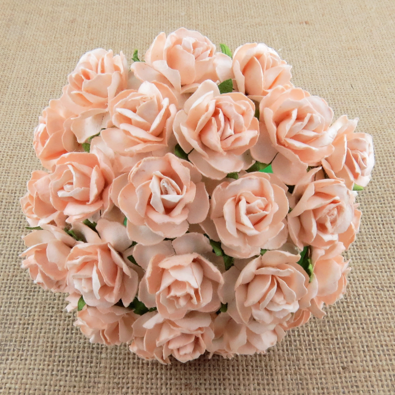 Wild Orchid Crafts Mulberry Paper Flowers Pale Peach Wild Roses A